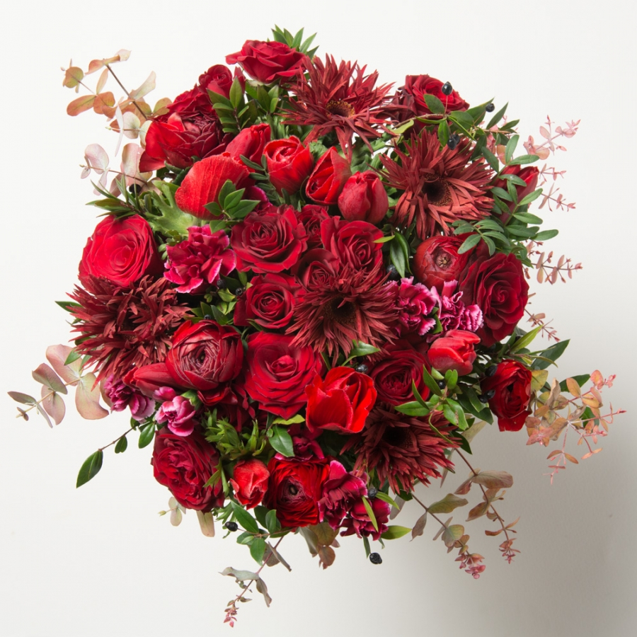 flower_carmine_red_f