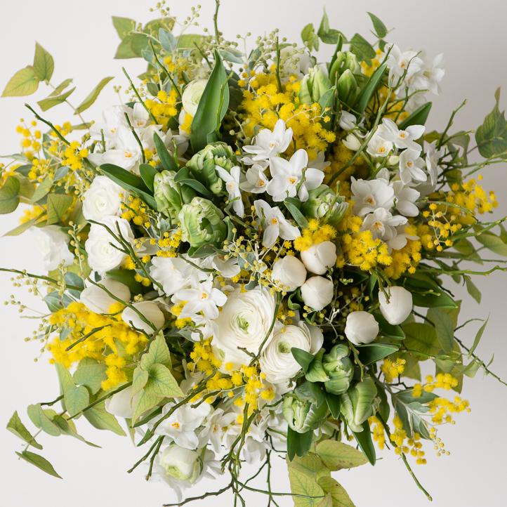 flower_mica_mimosa_p
