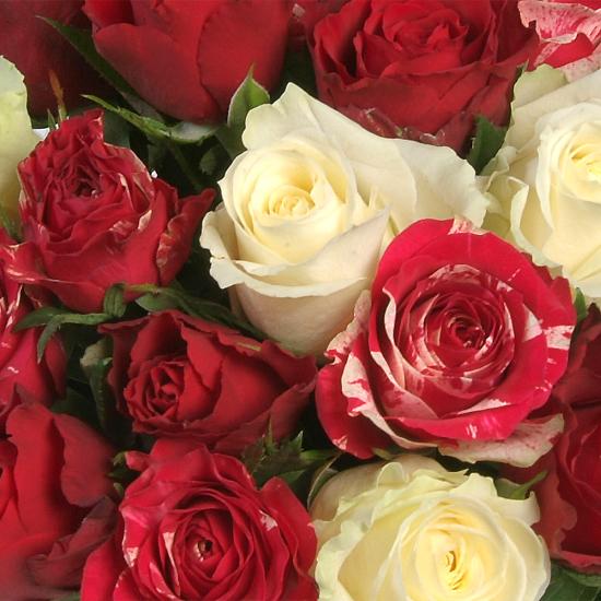 prachtig-passionele-rozenboeket-550x550-30594-1