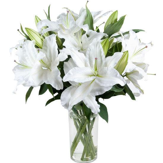 witte-geparfumeerde-lelies-_-aquarelle-be-550x550-30629